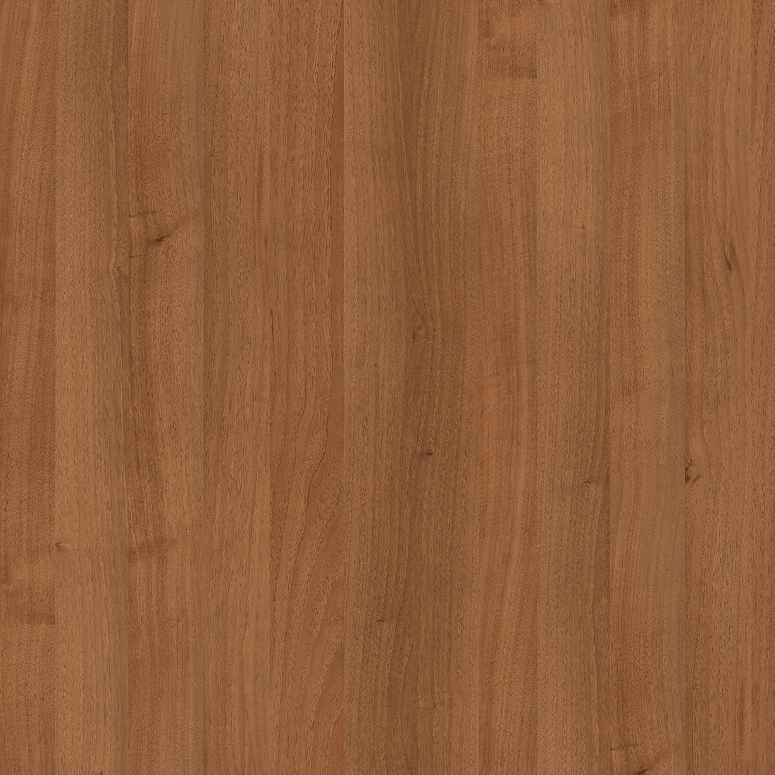 Guarnieri Walnut